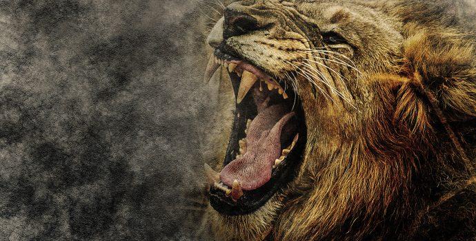 roaring line